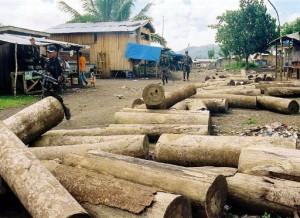 La coupe illégale de bois est un problème majeur dans beaucoup de pays dont les Philippines où cette saisie a été opérées . Photo: AFP