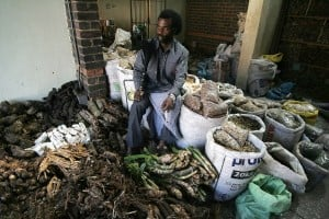A traditional healer who has been practicing since he was ten-years-old at the Faraday market in Johannesburg. Photo: AFP/Paballo Thekiso