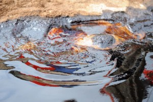 Spilled crude oil floats in the Niger delta at Bodo, a village in the oil-producing region of Ogoniland. PHOTO: AFP/PIUS UTOMI EKPEI