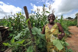 A woman smiles as she inspects the maize crop on a small-scale farm in Chinhamora, Zimbabwe, in February 2011. Photo: AFP/ALEXANDER JOE