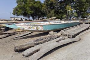Les pirogues en bois des pêcheurs doivent être remplacées par des bateaux en fibre de verre pour combattre la déforestation. Photo: AFP / SEYLLOU