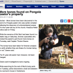 A screenshot of the News24 article. The photograph was taken in the US, not South Africa.