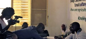 L'agriculture est l'un des principaux secteurs pourvoyeurs d'emplois au Sénégal. Photo Agence microprojets.