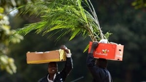 Deux marchands zimbabweens dans les rues de Harare. Photo AFP.