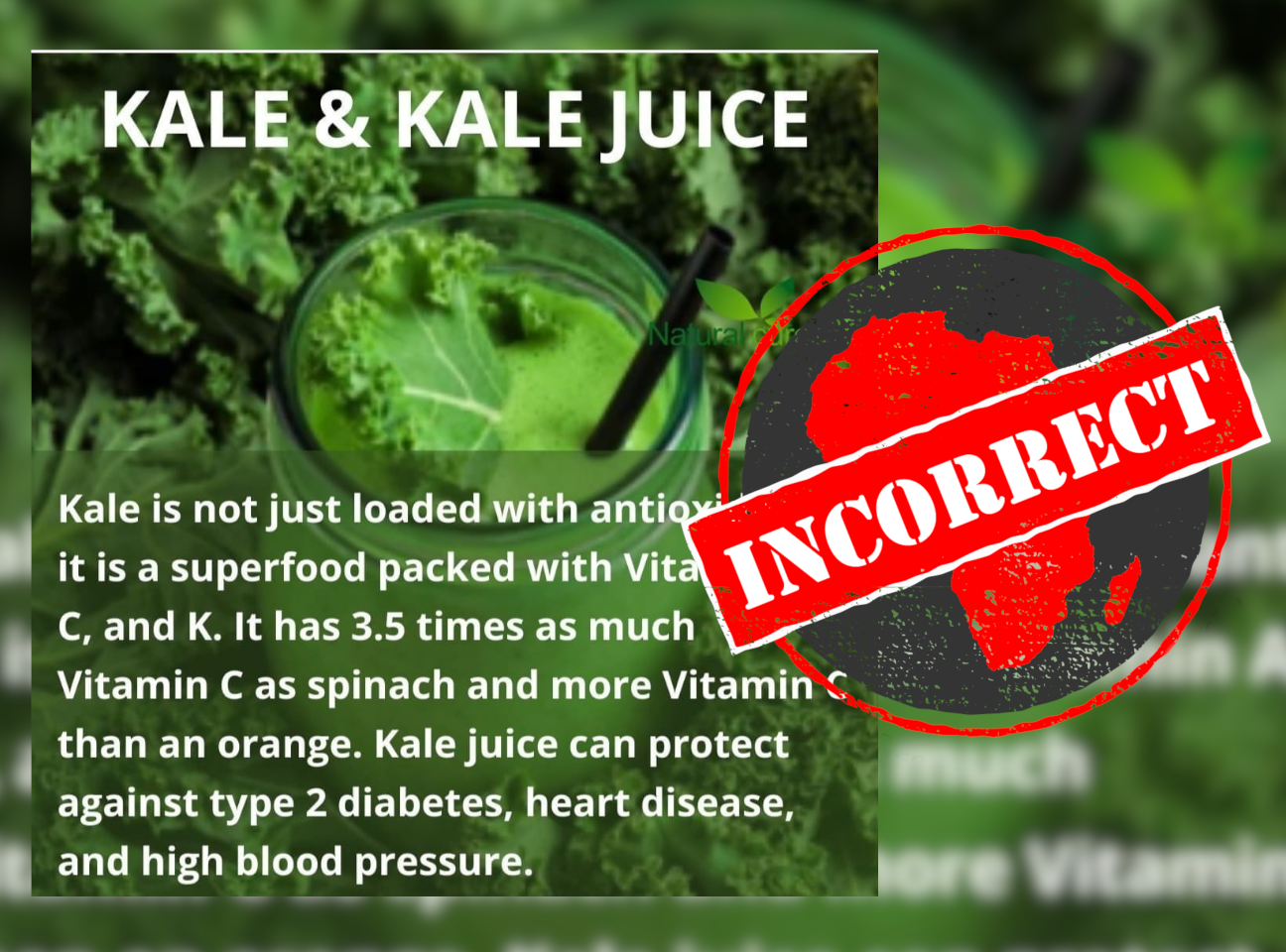 Kale_Incorrect
