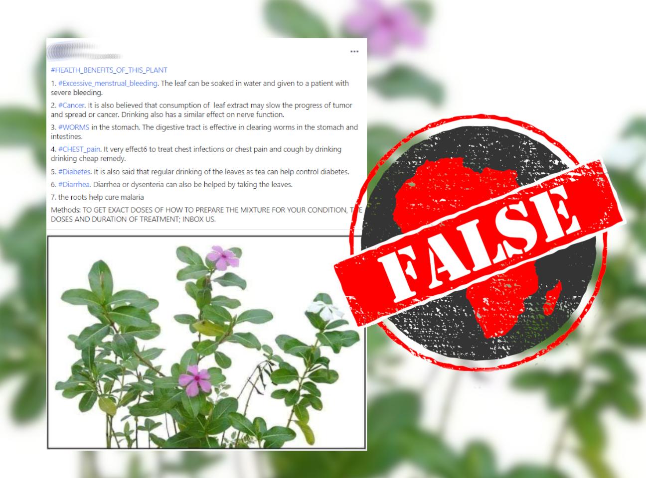 Plant_False